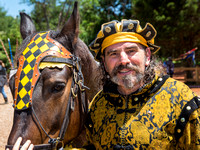 Tennessee Medieval Faire - 2015