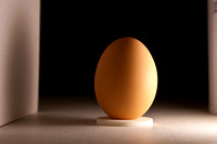 Egg lighting at 90 degrees